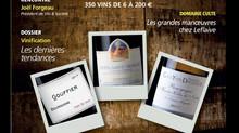 Iconoclaste blanc 2017 sélectionné dans la presse