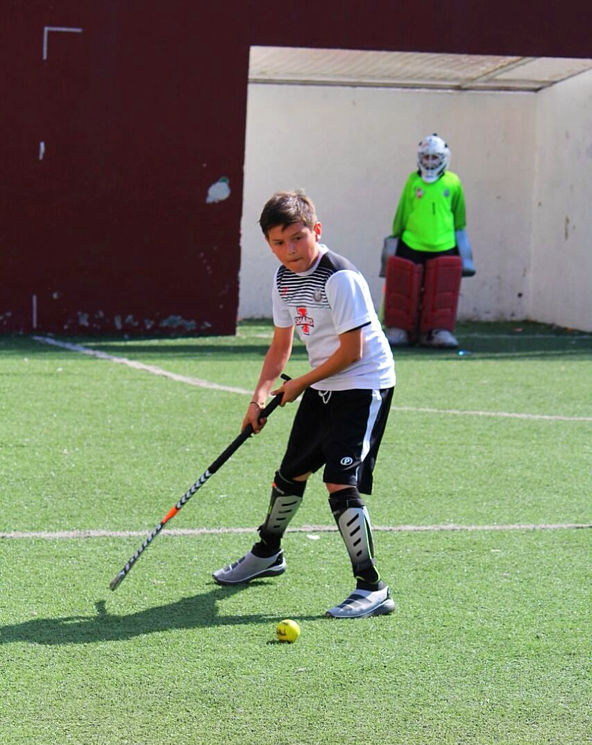 Hockey sobre pasto