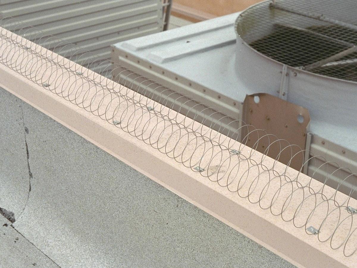 Bird-Coil Install Example 1