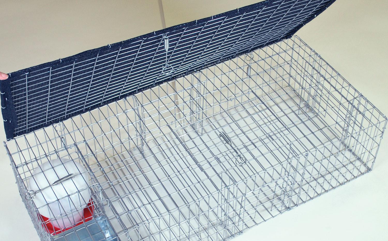 Bird Traps - Example 2