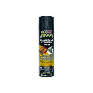 Wasp & Hornet Jet Foam Spray (544 g)