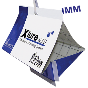 XLure IMM - Ready-To-Use Trap
