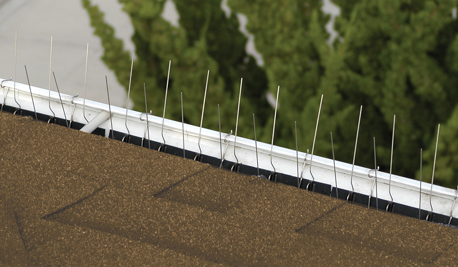 Gutter-Point Install Example 1
