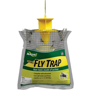 Rescue! Disposable Fly Trap