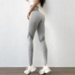 Baxter Seamless Sports Legging - Grey