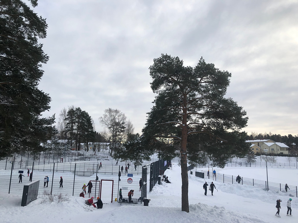 Foreigners in Finland