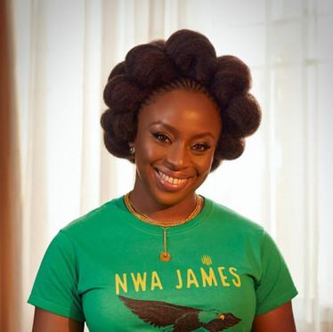 Chimamanda Ngozi Adichie's novel Half of a Yellow Sun voted best book