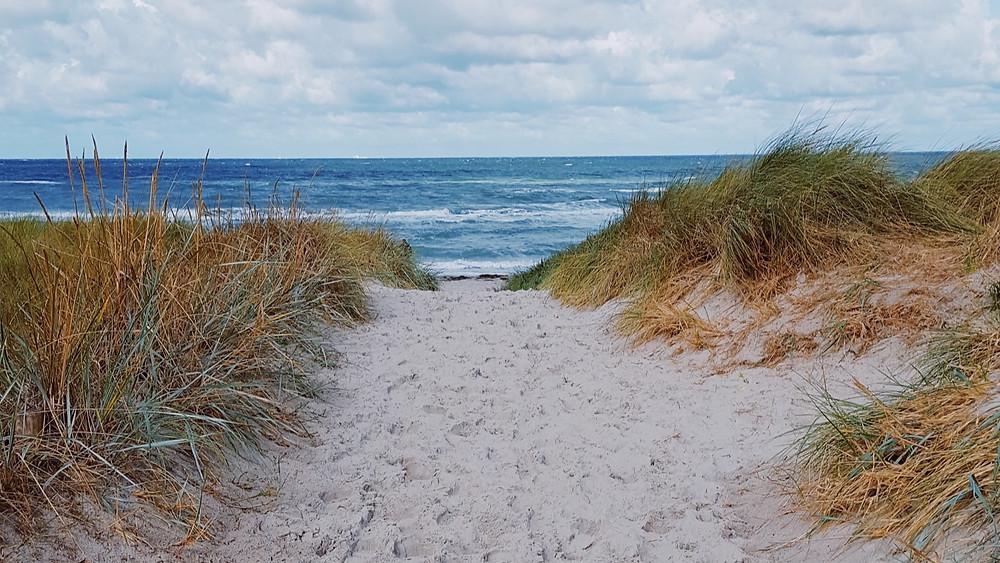 Blick von Dünen aufs Meer.