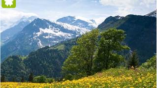 """Wissenspool """"Tourismus und biologische Vielfalt"""""""