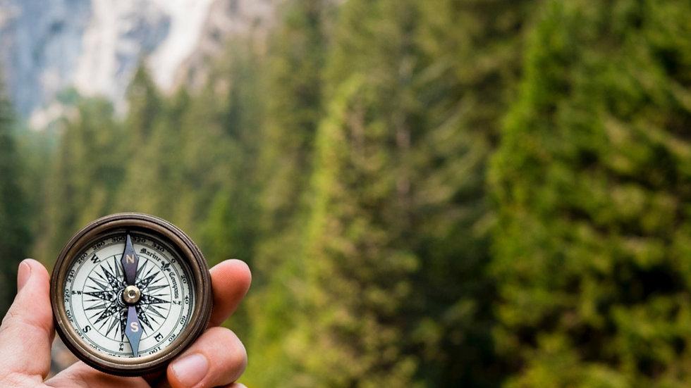 Kompass vor grünem Hintergrund