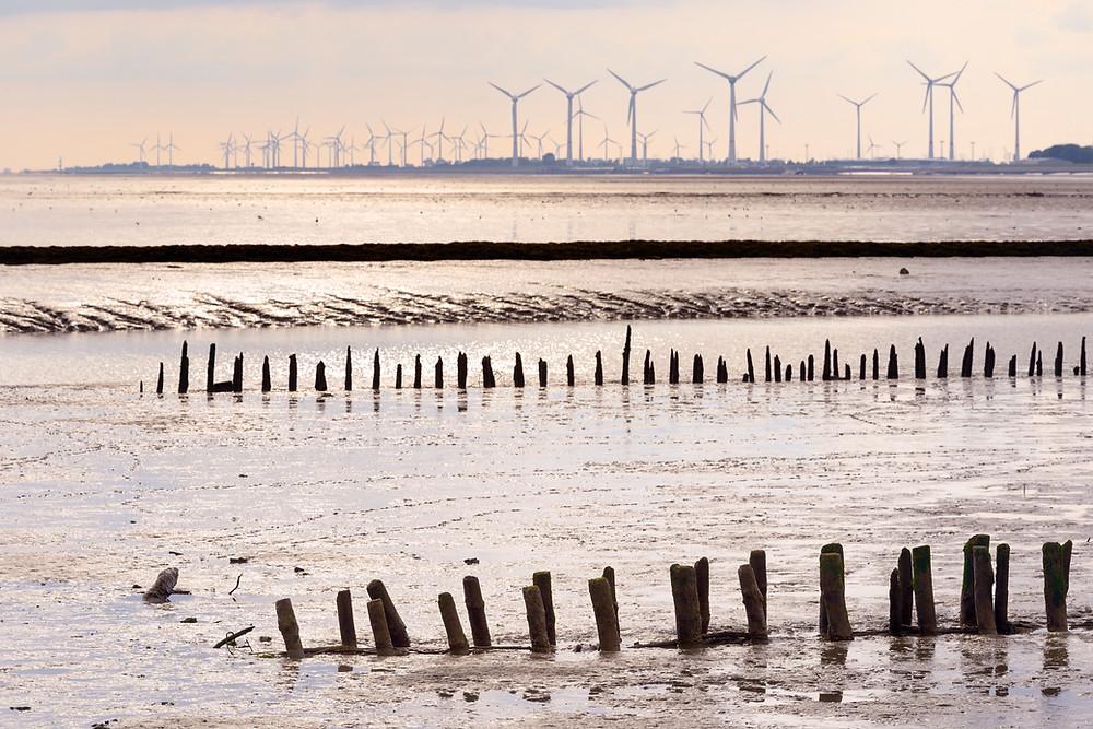 Strand, Meer und Windräder