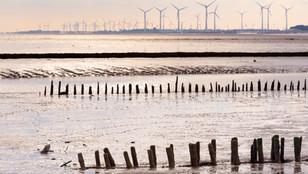 Klimawandel anpacken - Anpassungsstrategien für den Tourismus in Niedersachsen