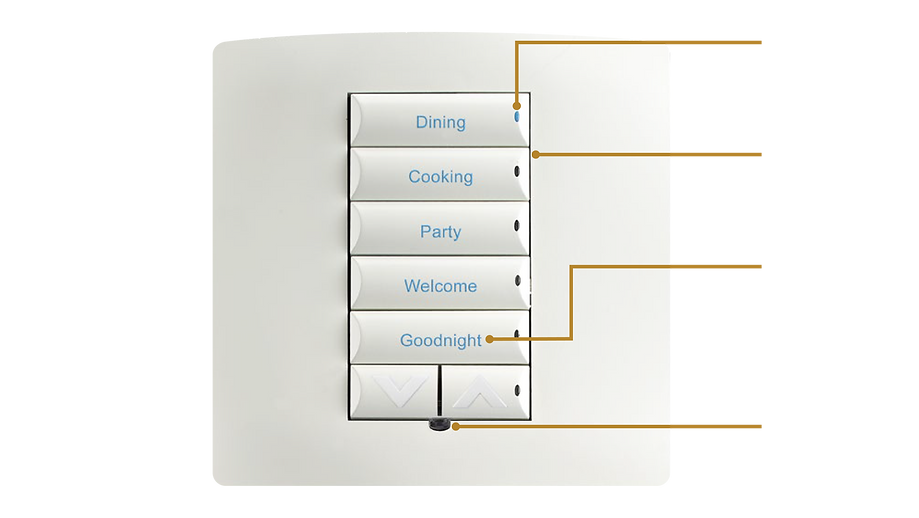 The Cable Guy Smart Home Automated Lighting
