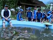 Kolam-Trafi-Ikan.jpg