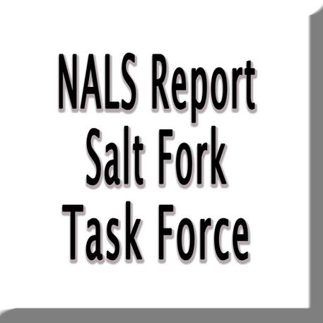 NALS Salt Fork Task Report.png