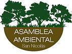 asamblea ambiental san nicolas - Alfonsi