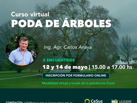Curso virtual de poda - Beneficios para participantes de Semana del Árbol.