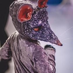 Nutcracker Mouse