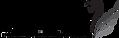 Tutu-Logo-312x100.png