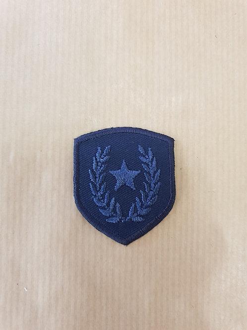 Insigne bleu
