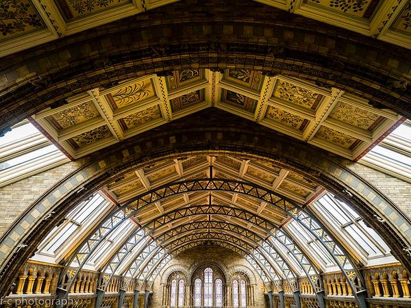 photo du plafond du museum d'histore naturelles de Londres