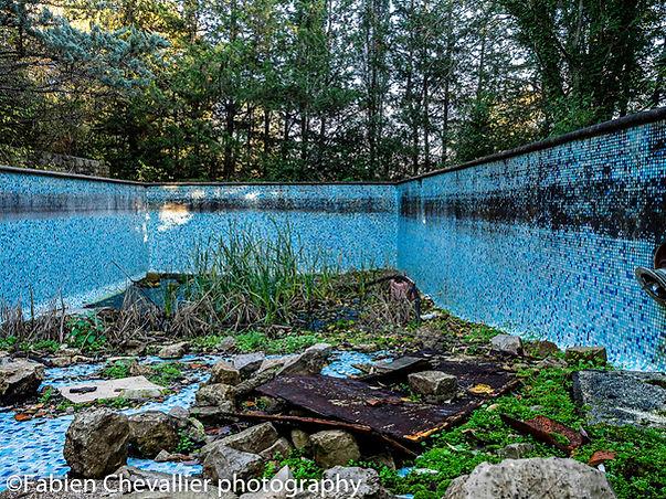 photogaphie d'une piscine abandonnée et de nature qui reprend ses droits