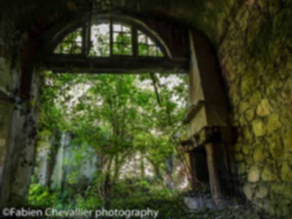 photographie de lieux abandonné d'une cheminée et d'un arbre