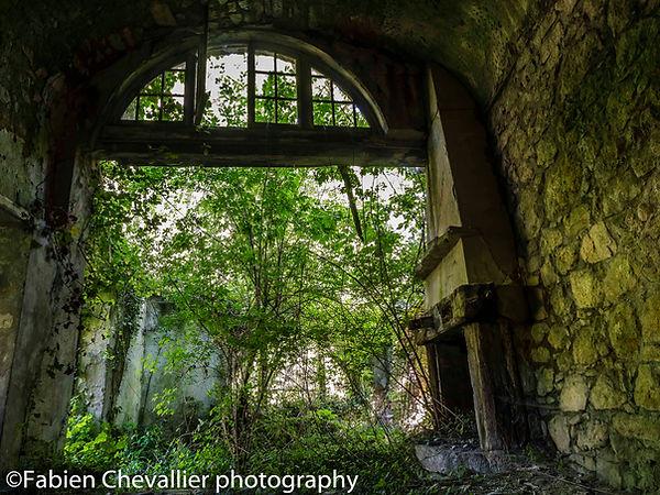 photo maison abandonnée avec un arbre et une cheminée