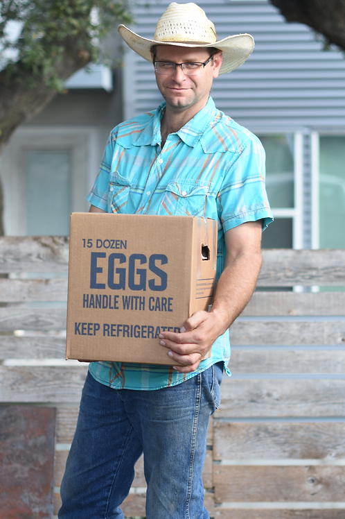 Eggs - 1 case (15 dz)
