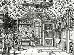 Wunderkammer-1599_edited.jpg