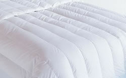 baffle channel white goose dow comforter