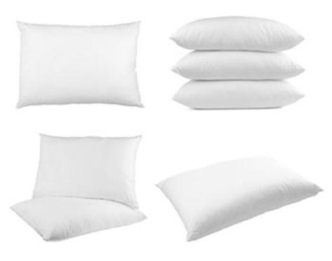 Luxury Goose Down Pillows