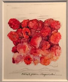 market-rogalski-Raspberries.JPG