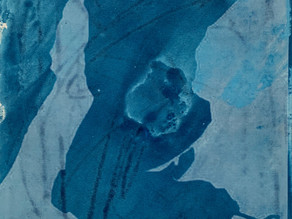 The leftovers - A3 cyanotypes