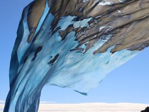 Documentation of fabric cyanotypes