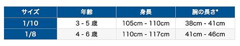 1/10 - 1/8サイズ.png