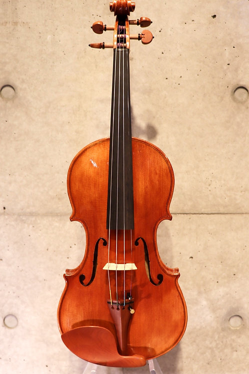 Experience Violin Set 4/4