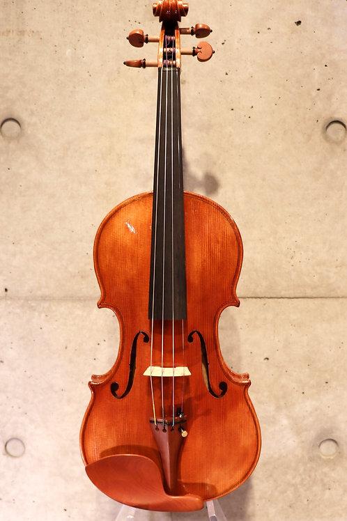 Experience Violin Set 4/4