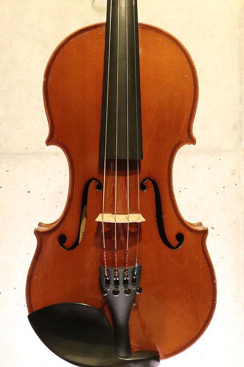 """""""Guarnerius"""" old violin, Czech Republic"""
