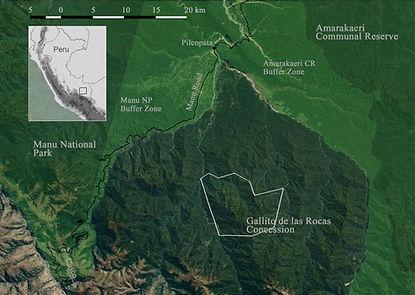 map_Gallito_de_las_Rocas_terrain.jpg