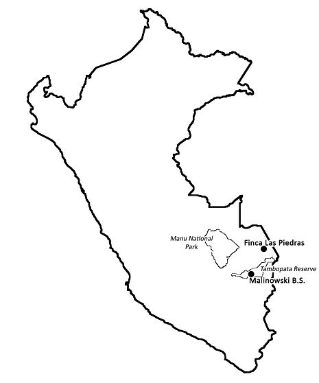 Peru_Manu_map_Tambopata_outline_black.jp