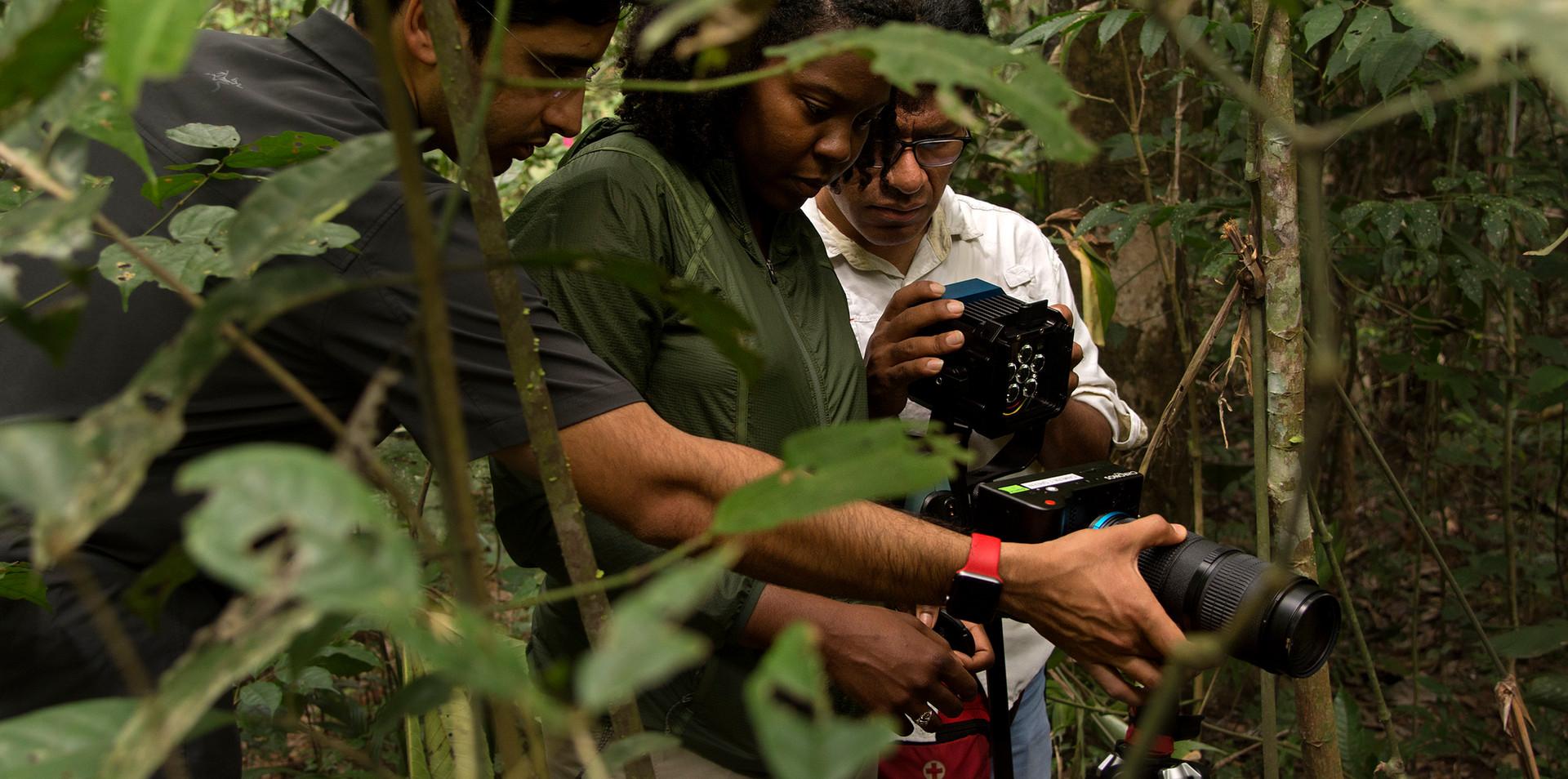 Filming spiders in the rainforest at Finca Las Piedras