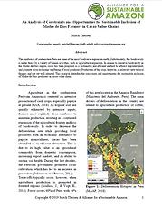 thumbnail_intern report_2019_Theisen.PNG