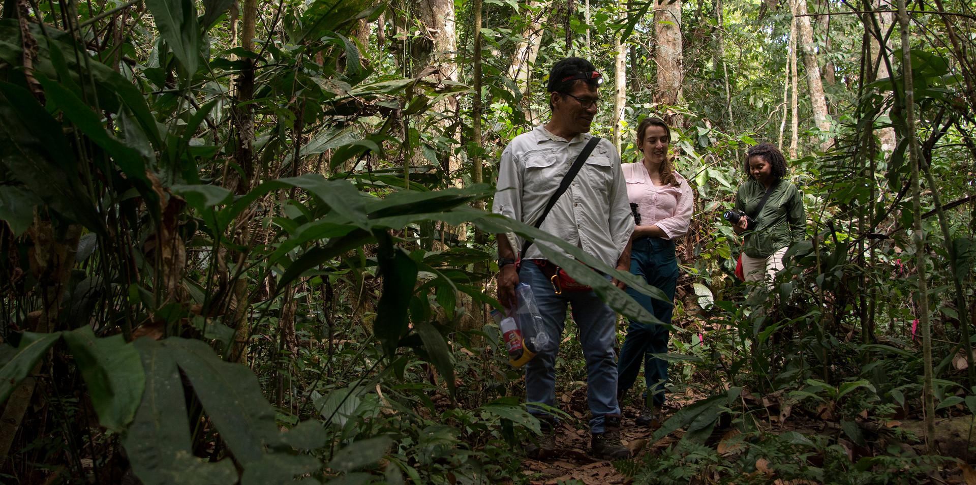 Searching for spiders at Finca Las Piedras