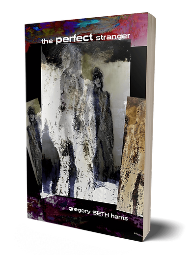 3dCover_PerfectStranger.png