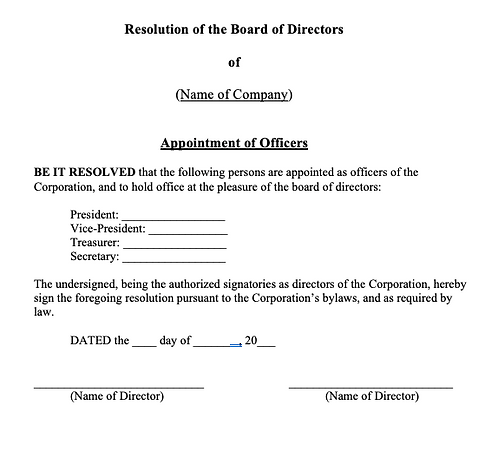 Director Resolution (Appointment of Officers)