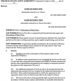 Real Estate Agent Services Agreement - N