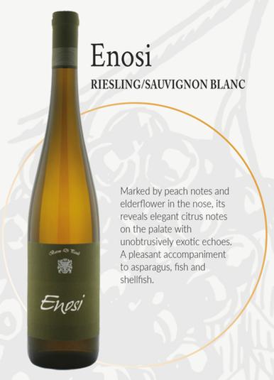Enosi Reserva 2011 Riesling/Sauvignon Blanc
