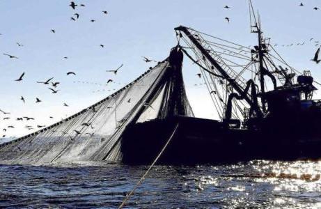 La buona pesca di Conte