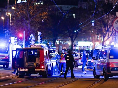 Terrore jihadista, c'è chi soffia sul fuoco